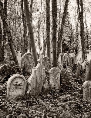 Highgate Cemetery London Palladium Print palladium platinum print alternative historic process United Kingdom Graves Sepia