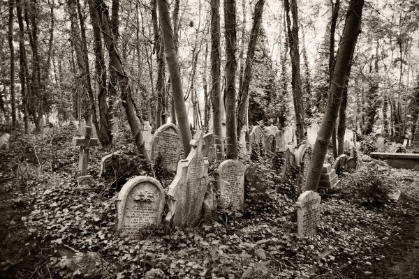 Highgate Cemetery London Palladium Print palladium platinum print alternative historic process United Kingdom Graves Sepia